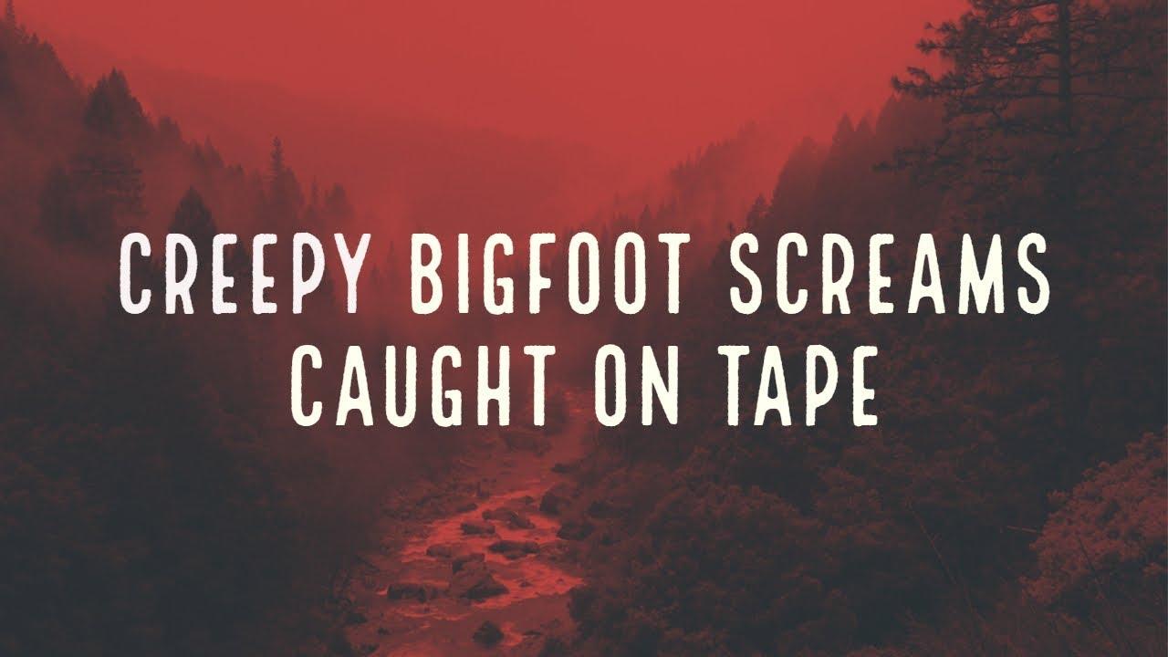 mbm-creepy-bigfoot-screams-caugh