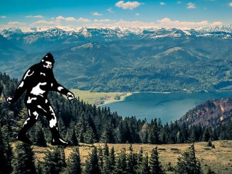 Alberta Sasquatch Sighting Reports