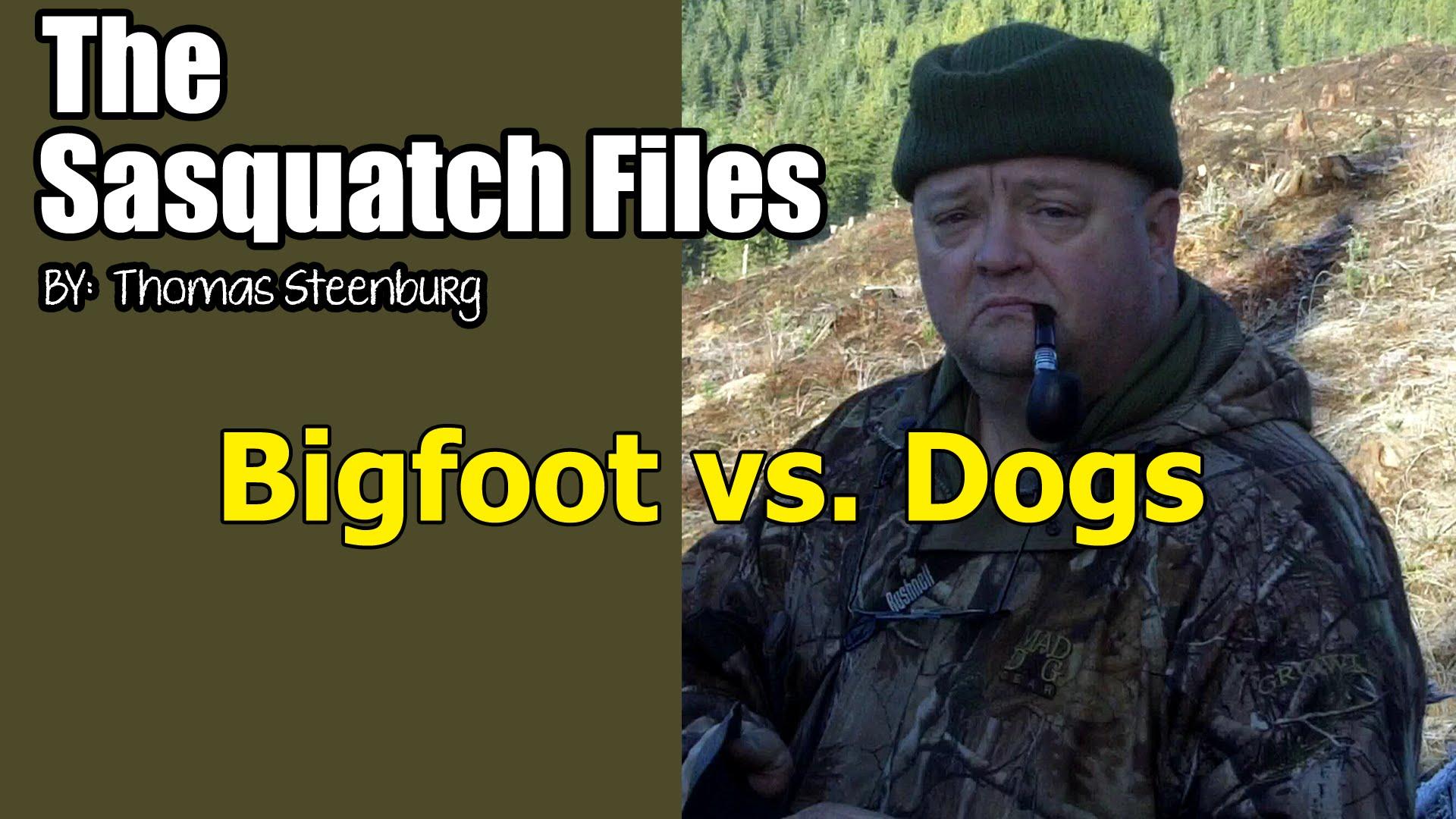 tsf-bigfoot-vs-dogs